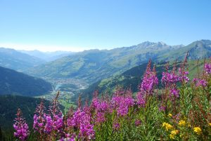 Haute-Tarentaise valley