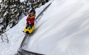 « X-TREME Luge » – Multi-season sledge